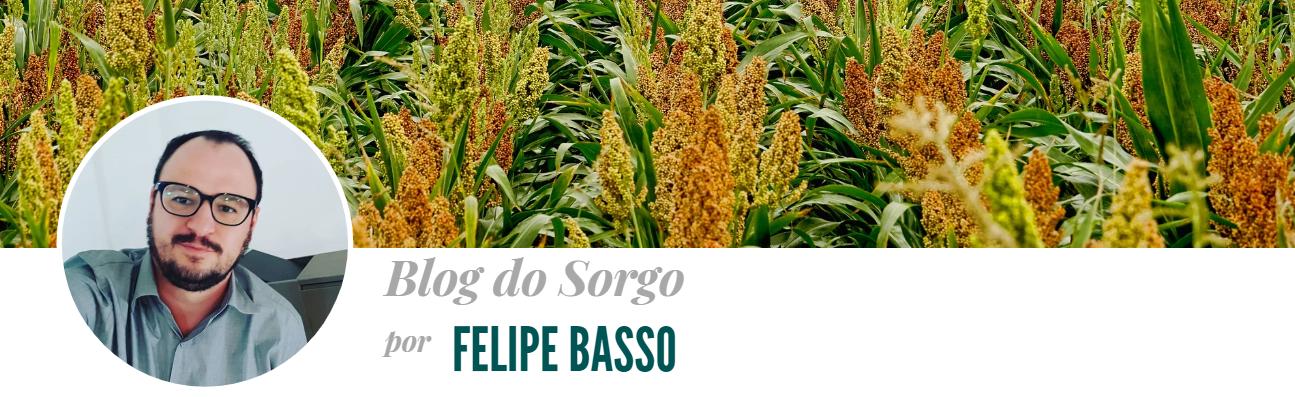 Blog do Sorgo