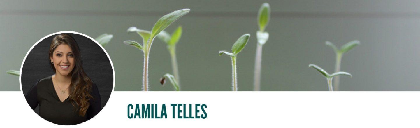 Blog da Camila Telles