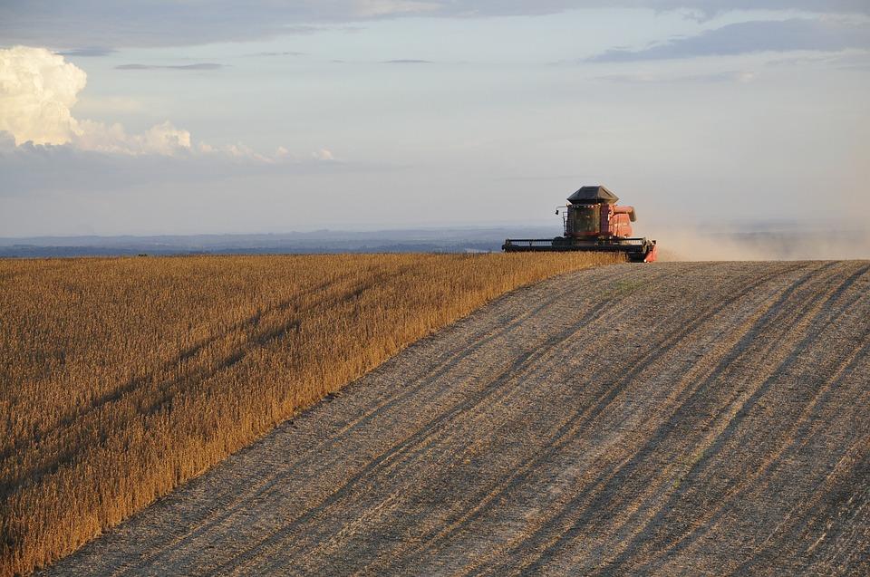 harvest-1543064_960_720