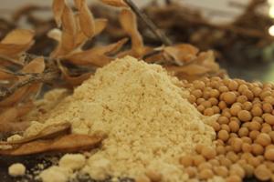 Farinha e grãos de soja. Foto: Vladimir Moreira