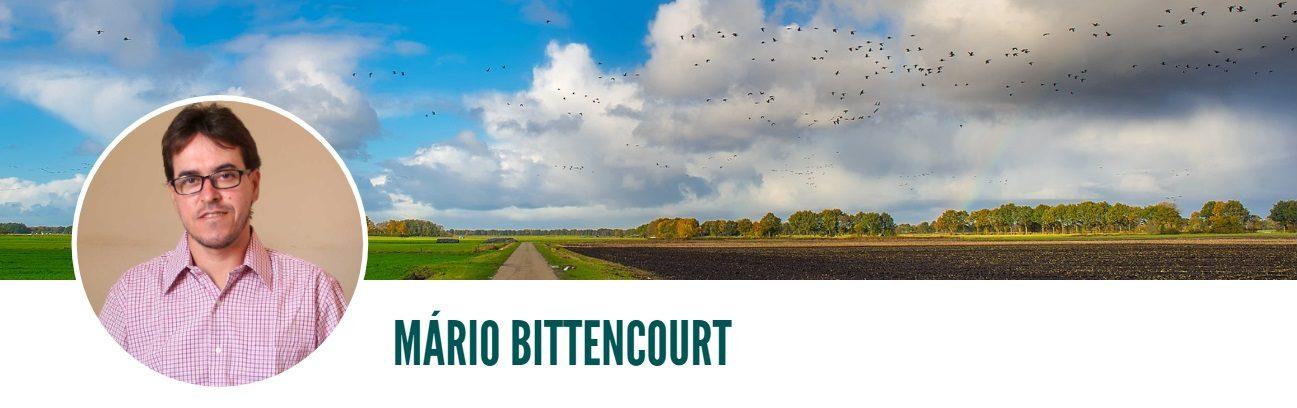 Blog do Mário Bittencourt