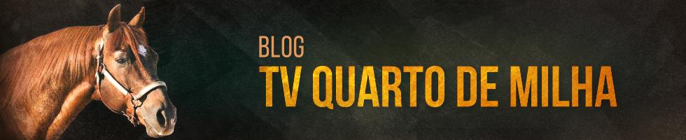 Blog da TV Quarto de Milha